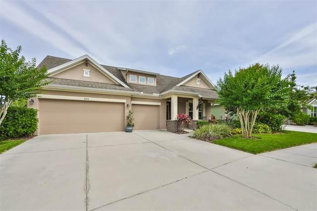 6906 Covington Stone Avenue, Apollo Beach, FL 33572 (MLS #T3306062) :: The Robertson Real Estate Group