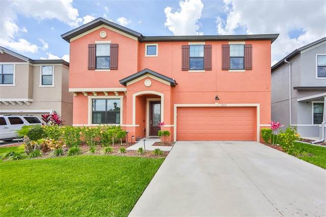 12051 Creek Preserve Drive, Riverview, FL 33579 (MLS #T3306084) :: The Paxton Group