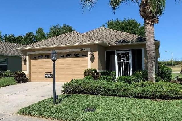 18861 Water Lily Lane, Hudson, FL 34667 (MLS #T3306086) :: Positive Edge Real Estate