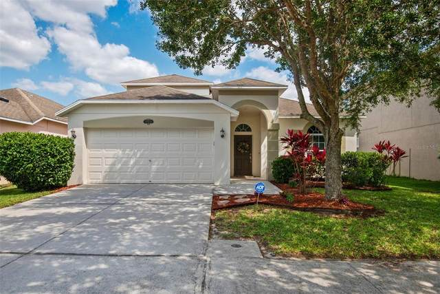 10938 Ancient Futures Drive, Tampa, FL 33647 (MLS #T3306093) :: The Nathan Bangs Group