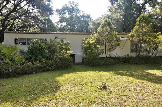 4650 20TH Street, Zephyrhills, FL 33542 (MLS #T3306103) :: Southern Associates Realty LLC