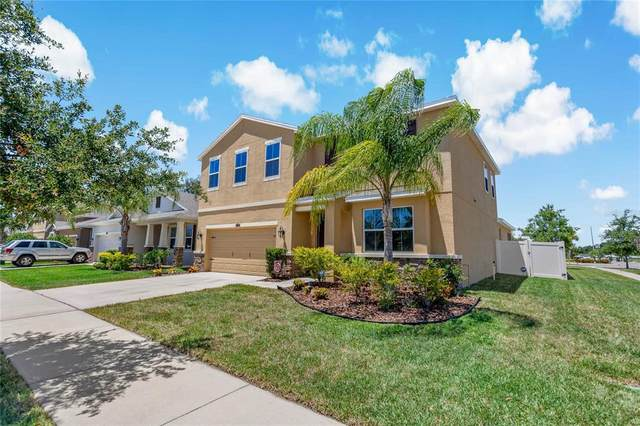 10628 Scenic Hollow Drive, Riverview, FL 33578 (MLS #T3306120) :: The Paxton Group