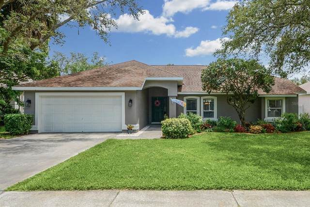 2325 Timber Grove Drive, Valrico, FL 33596 (MLS #T3306124) :: Pepine Realty