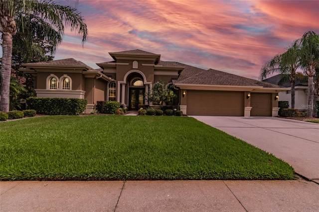 23618 Gracewood Circle, Land O Lakes, FL 34639 (MLS #T3306132) :: MVP Realty