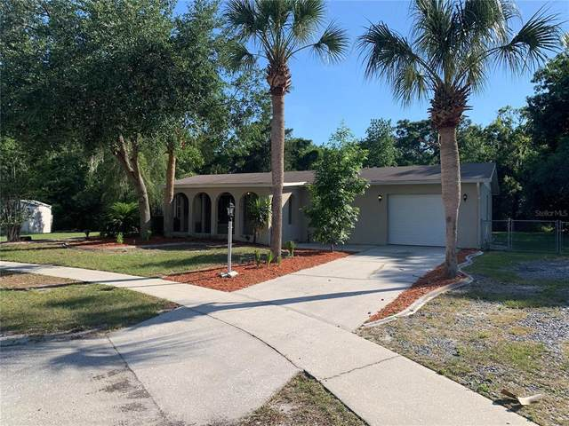 4501 Maya Ct, Spring Hill, FL 34606 (MLS #T3306133) :: The Paxton Group