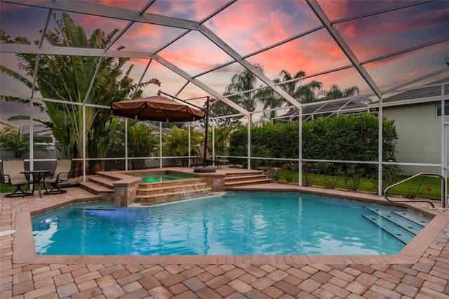 1947 Lago Vista Boulevard, Palm Harbor, FL 34685 (MLS #T3306144) :: Griffin Group