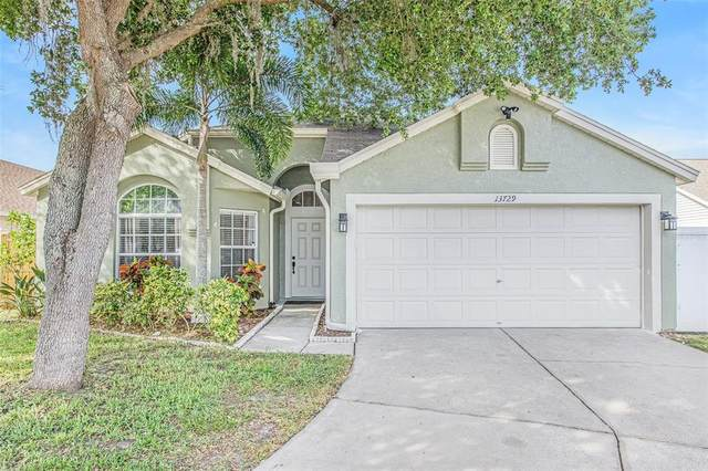 13729 Staghorn Road, Tampa, FL 33626 (MLS #T3306157) :: Delgado Home Team at Keller Williams