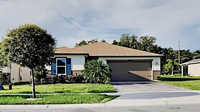 6444 Domenico Court, Groveland, FL 34736 (MLS #T3306159) :: Your Florida House Team