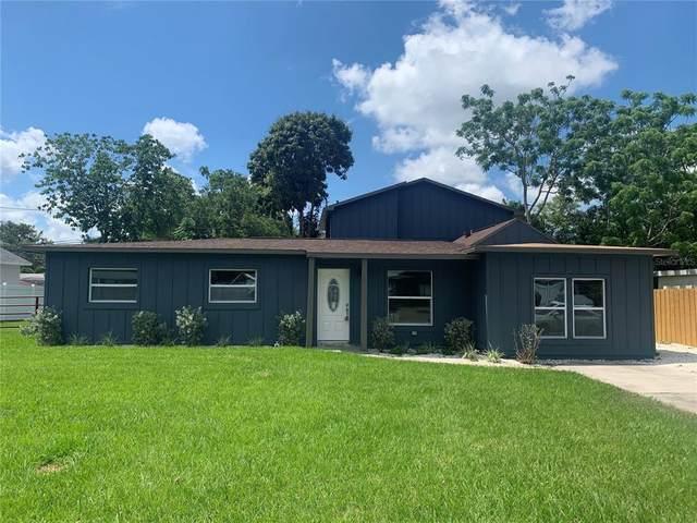 2743 Kumquat Drive, Clearwater, FL 33759 (MLS #T3306161) :: Visionary Properties Inc