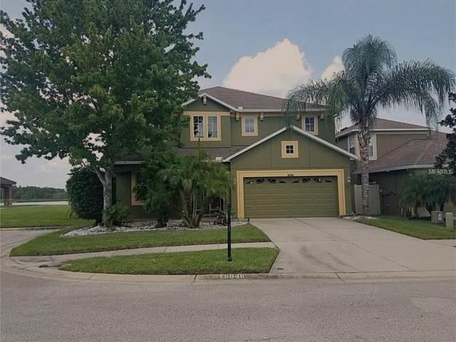 18046 Ayrshire Boulevard, Land O Lakes, FL 34638 (MLS #T3306185) :: Rabell Realty Group