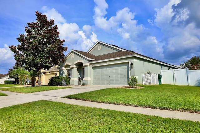 7706 Shore Acres Street, Wesley Chapel, FL 33545 (MLS #T3306190) :: Griffin Group