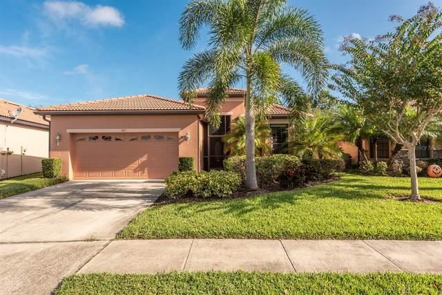 217 Silver Falls Drive, Apollo Beach, FL 33572 (MLS #T3306197) :: The Robertson Real Estate Group