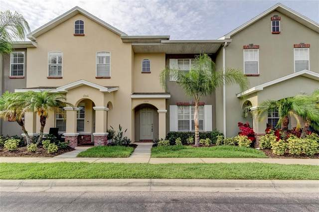 12639 Weston Drive, Tampa, FL 33626 (MLS #T3306212) :: Delgado Home Team at Keller Williams