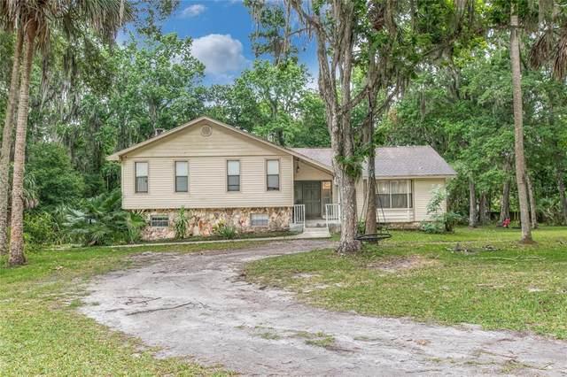 10420 Carlin Drive, Brooksville, FL 34601 (MLS #T3306245) :: Your Florida House Team