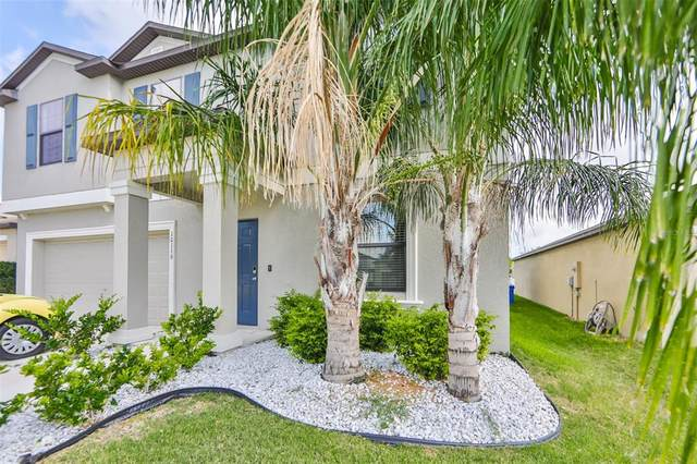 10116 Rosemary Leaf Lane, Riverview, FL 33578 (MLS #T3306246) :: The Duncan Duo Team