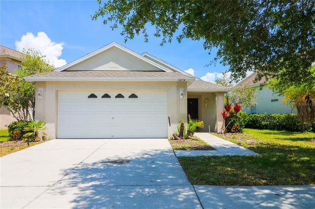 10714 Lakeside Vista Drive, Riverview, FL 33569 (MLS #T3306266) :: Visionary Properties Inc