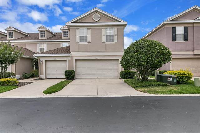 10015 Tranquility Way, Tampa, FL 33625 (MLS #T3306281) :: Carmena and Associates Realty Group