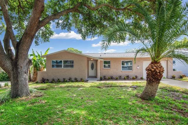956 Wicks Drive, Palm Harbor, FL 34684 (MLS #T3306323) :: Delgado Home Team at Keller Williams