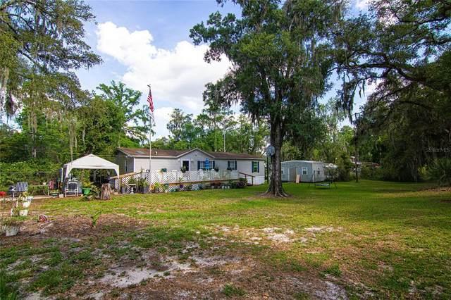 9211 Harney Baptist Church Road, Tampa, FL 33637 (MLS #T3306331) :: The Nathan Bangs Group