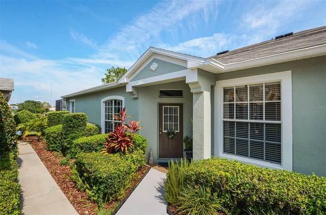 5847 Heronpark Place, Lithia, FL 33547 (MLS #T3306333) :: Pepine Realty
