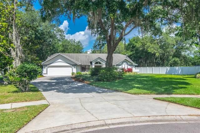 17622 Pasture Road, Odessa, FL 33556 (MLS #T3306349) :: The Nathan Bangs Group