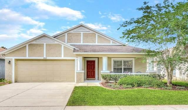 21823 Waverly Shores Lane, Land O Lakes, FL 34637 (MLS #T3306366) :: Griffin Group