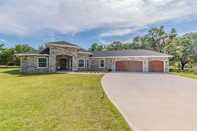 6801 Luana Lane, Seffner, FL 33584 (MLS #T3306396) :: Sarasota Home Specialists
