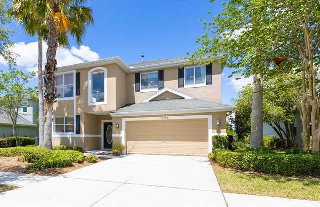 19906 Bluff Oak Boulevard, Tampa, FL 33647 (MLS #T3306410) :: Delgado Home Team at Keller Williams