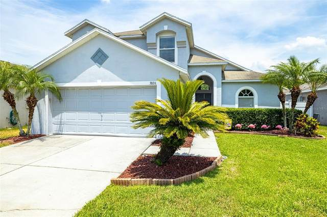 3826 Judson Drive, Land O Lakes, FL 34638 (MLS #T3306434) :: Griffin Group