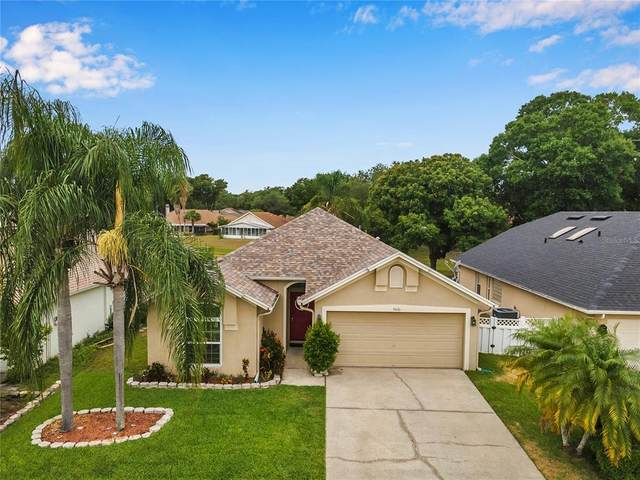 9616 Long Meadow Drive, Tampa, FL 33615 (MLS #T3306480) :: Carmena and Associates Realty Group