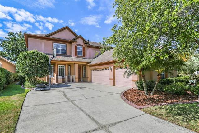 8315 Old Town Drive, Tampa, FL 33647 (MLS #T3306506) :: Delgado Home Team at Keller Williams