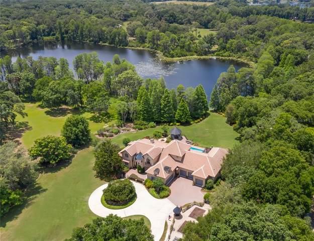 7762 Still Lakes Drive, Odessa, FL 33556 (MLS #T3306509) :: Team Pepka