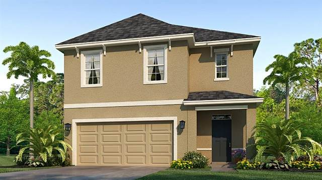7583 Cypress Walk Drive, New Port Richey, FL 34655 (MLS #T3306543) :: Team Borham at Keller Williams Realty