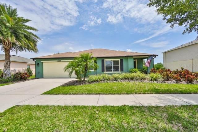 344 Star Shell Drive, Apollo Beach, FL 33572 (MLS #T3306566) :: The Robertson Real Estate Group