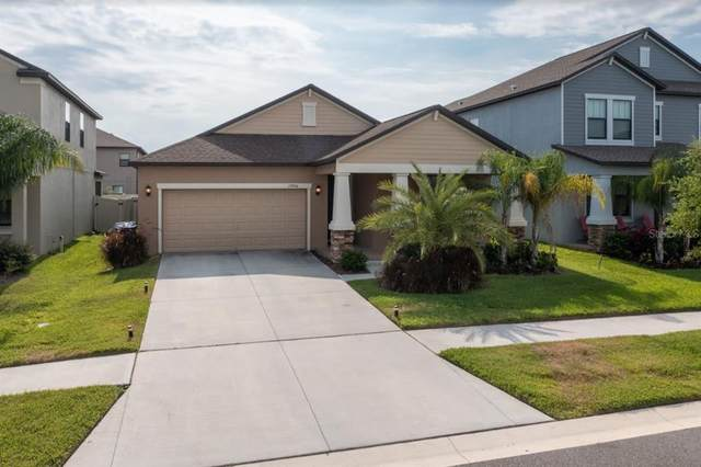 13906 Snowy Plover Lane, Riverview, FL 33579 (MLS #T3306569) :: The Robertson Real Estate Group
