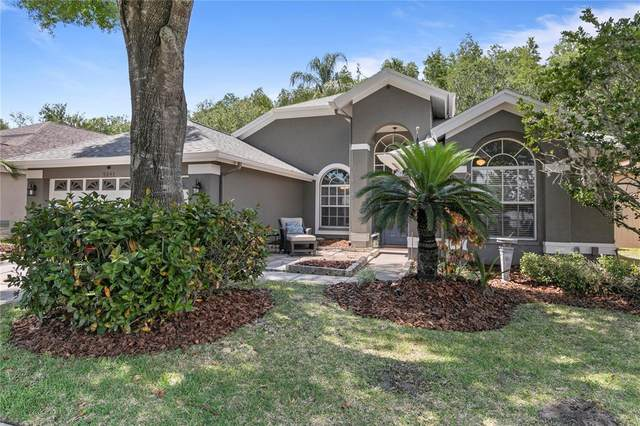9043 Breland Drive, Tampa, FL 33626 (MLS #T3306590) :: Delgado Home Team at Keller Williams
