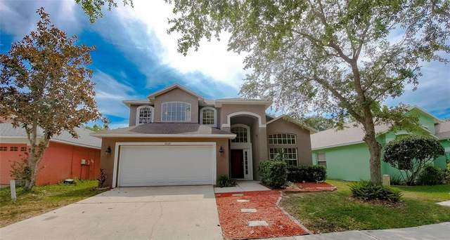 18929 Twinberry Drive, Tampa, FL 33647 (MLS #T3306620) :: The Nathan Bangs Group