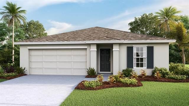 1336 Ocean Spray Drive, Ruskin, FL 33570 (MLS #T3306624) :: The Robertson Real Estate Group
