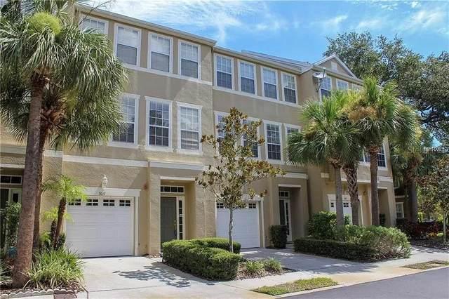 Tampa, FL 33611 :: The Nathan Bangs Group