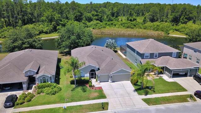 5935 Cape Loop, Land O Lakes, FL 34639 (MLS #T3306646) :: Delgado Home Team at Keller Williams