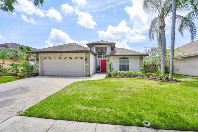 16535 Lake Heather Drive, Tampa, FL 33618 (MLS #T3306670) :: The Robertson Real Estate Group
