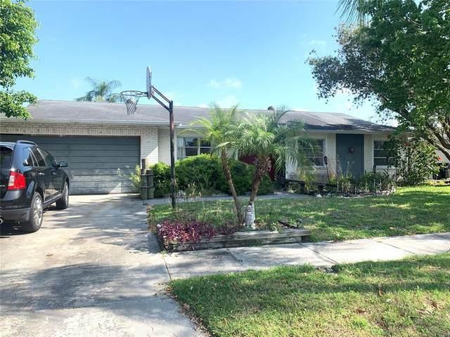 8705 Palisades Drive, Tampa, FL 33615 (MLS #T3306676) :: Baird Realty Group