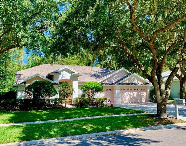 5012 Londonderry Drive, Tampa, FL 33647 (MLS #T3306690) :: The Nathan Bangs Group