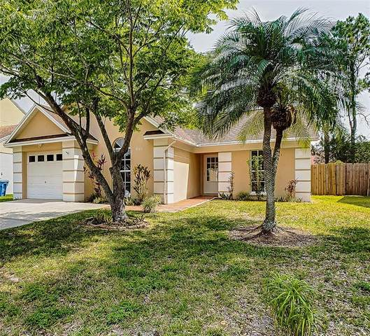 9720 Fox Hollow Road, Tampa, FL 33647 (MLS #T3306698) :: Heckler Realty