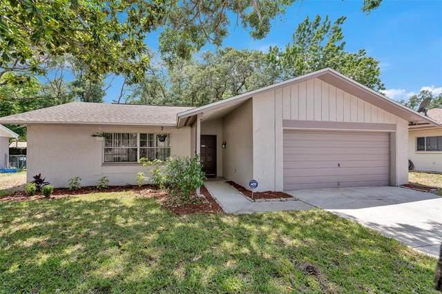 12715 Woodchuck Way, Hudson, FL 34667 (MLS #T3306711) :: Your Florida House Team