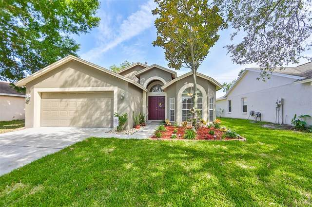 1418 Wakefield Drive, Brandon, FL 33511 (MLS #T3306715) :: Team Borham at Keller Williams Realty