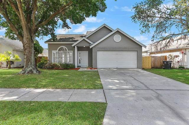 8748 Exposition Drive, Tampa, FL 33626 (MLS #T3306777) :: Delgado Home Team at Keller Williams