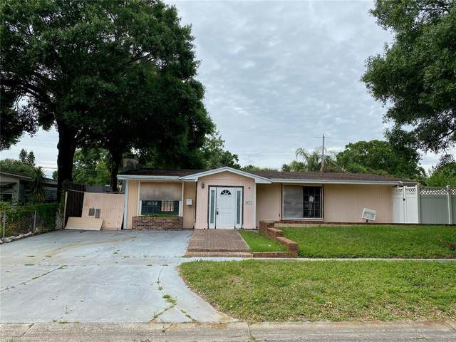 Tampa, FL 33616 :: Carmena and Associates Realty Group