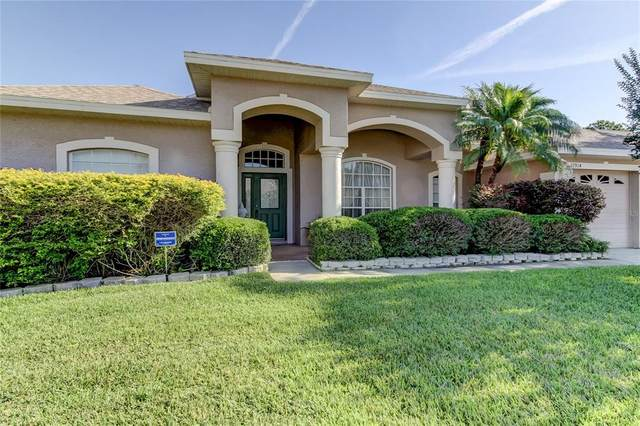 12914 Tar Flower Drive, Tampa, FL 33626 (MLS #T3306799) :: Delgado Home Team at Keller Williams