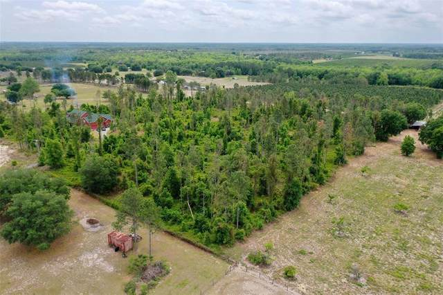 Sandy Ridge Avenue, Clermont, FL 34714 (MLS #T3306803) :: Stellar Home Sales
